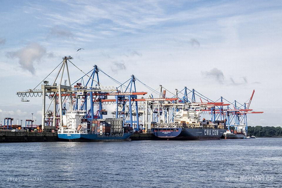 "Blick auf den Container Terminal ""BURCHARDKAI"" // Foto: MeerART"
