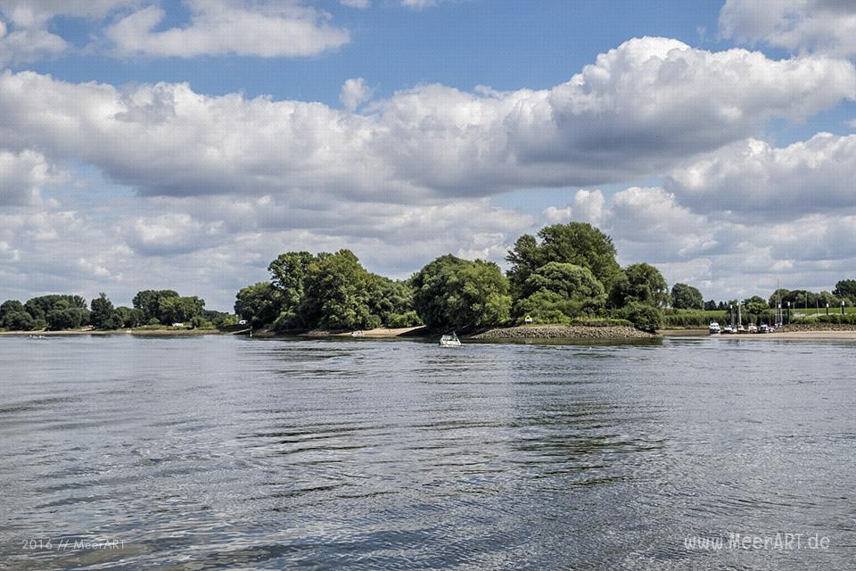 Bootstour auf der Elbe von Hamburg-Moorfleet bis zur Elbinsel bei Geesthacht // Foto: MeerART