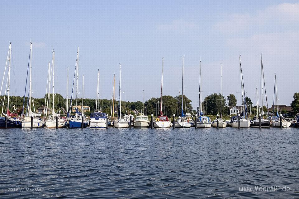 Tour auf der Schlei, von Maasholm bis Lindaunis und zurück // Foto: MeerART