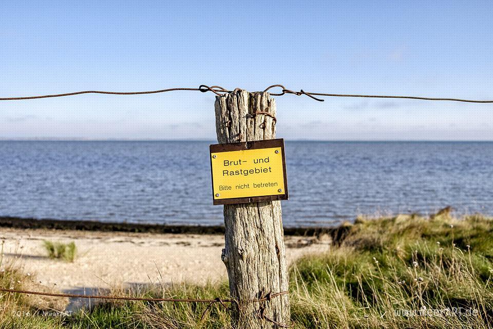 Die Nebensaison auf der nordfriesischen Insel Amrum // Foto: MeerART