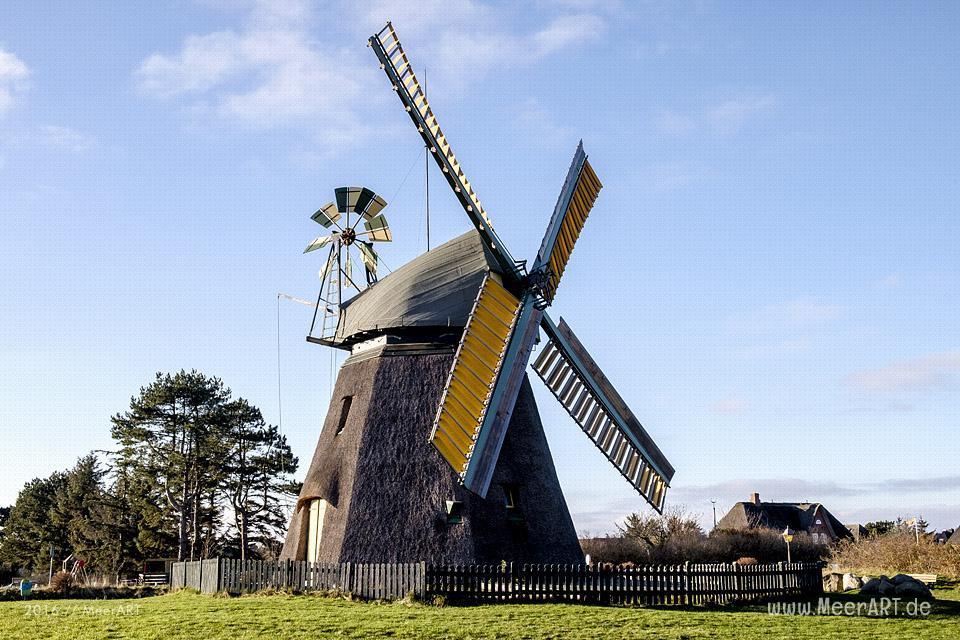 Die denkmalgeschützte Windmühle in Nebel auf der Insel Amrum // Foto: MeerART