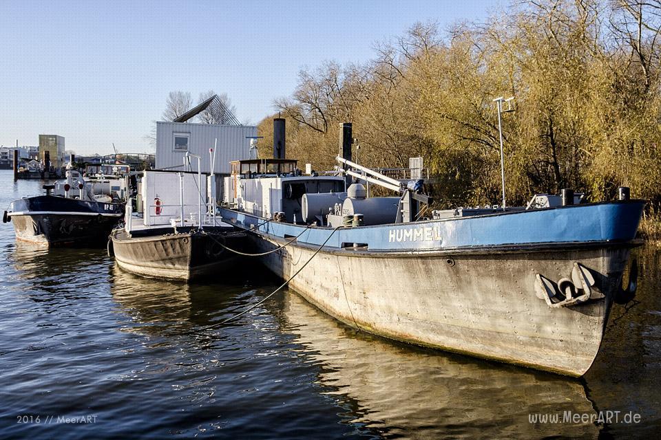 Impressionen von der Halbinsel Entenwerder in der Billwerder Bucht // Foto: MeerART