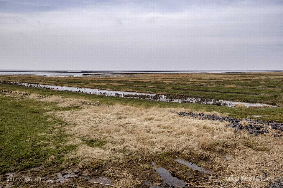Impressionen aus dem nordfriesischen Südwesthörn in der Gemeinde Emmelsbüll-Horsbüll // Foto: MeerART