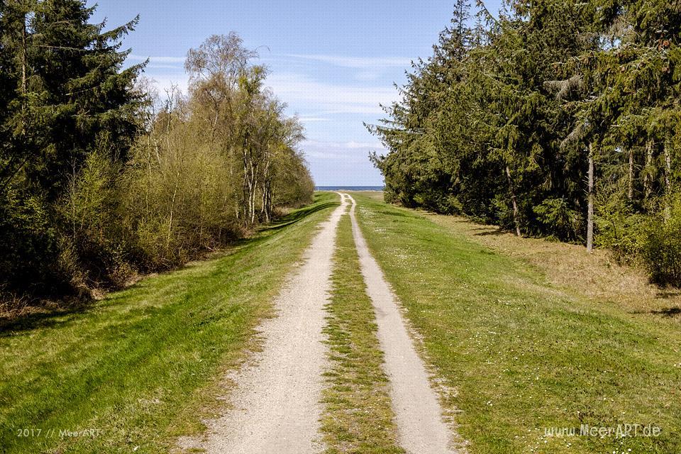 Radtour auf der schönen Sonneninsel Fehmarn // Foto: MeerART