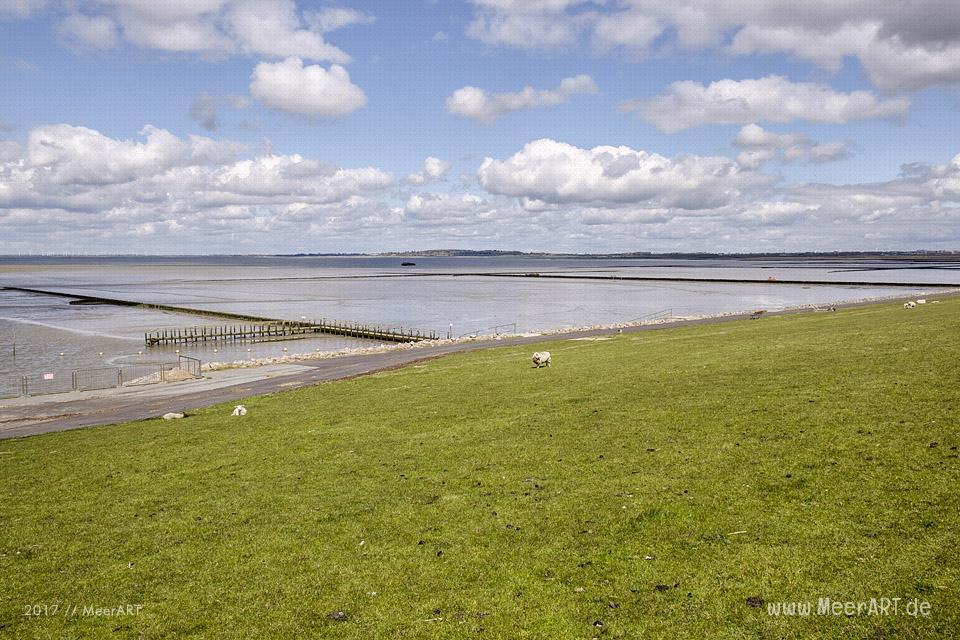 Impressionen aus Simonsberg in der Husumer Bucht Impressionen aus Simonsberg in der Husumer Bucht // Foto: MeerART// Foto: MeerART