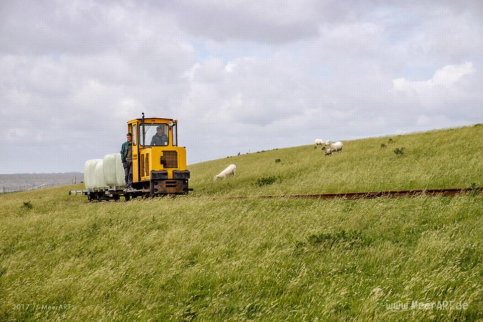Lüttmoorsiel mit dem Lorendamm der Halligbahn nach Nordstrandischmoor // Foto: MeerART / Ralph Kerpa