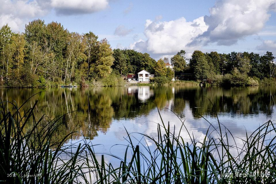 Herbstimpressionen aus Güster am Elbe-Lübeck-Kanal // Foto: Ralph Kerpa