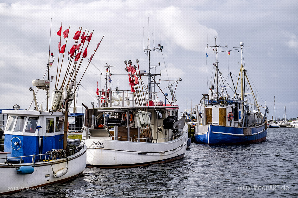 Der Fischerei und Erlebnishafen in Burgstaaken, eine touristische Sehenswürdigkeit auf Fehmarn // Foto: Ralph Kerpa