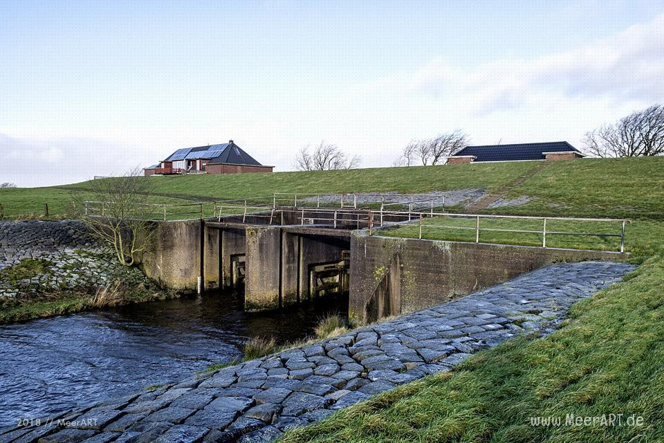 Das Naturschutzgebiet Beltringharder Koog in Nordfriesland // Foto: MeerART
