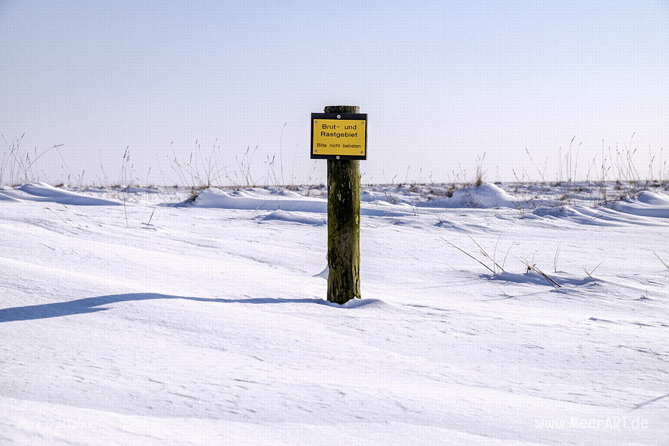 Winterlandschaft auf der Hamburger Hallig // Foto: MeerART