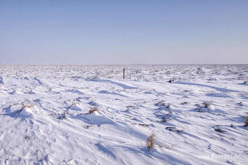 Winterlandschaft auf der Hamburger Hallig // Foto: Ralph Kerpa