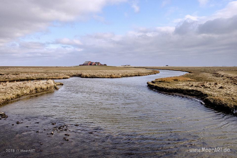 Die Hallig Langeneß im nordfriesischen Wattenmeer // Foto: MeerART / Ralph Kerpa