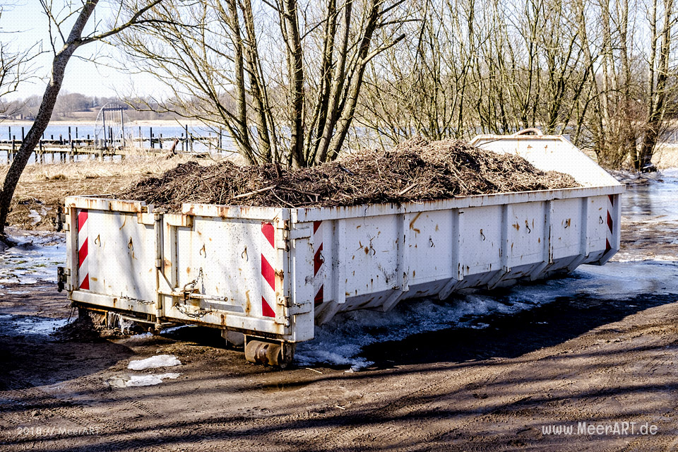 Angespülte Plastikpartikel an den Uferbereichen der Schlei // Foto: MeerART