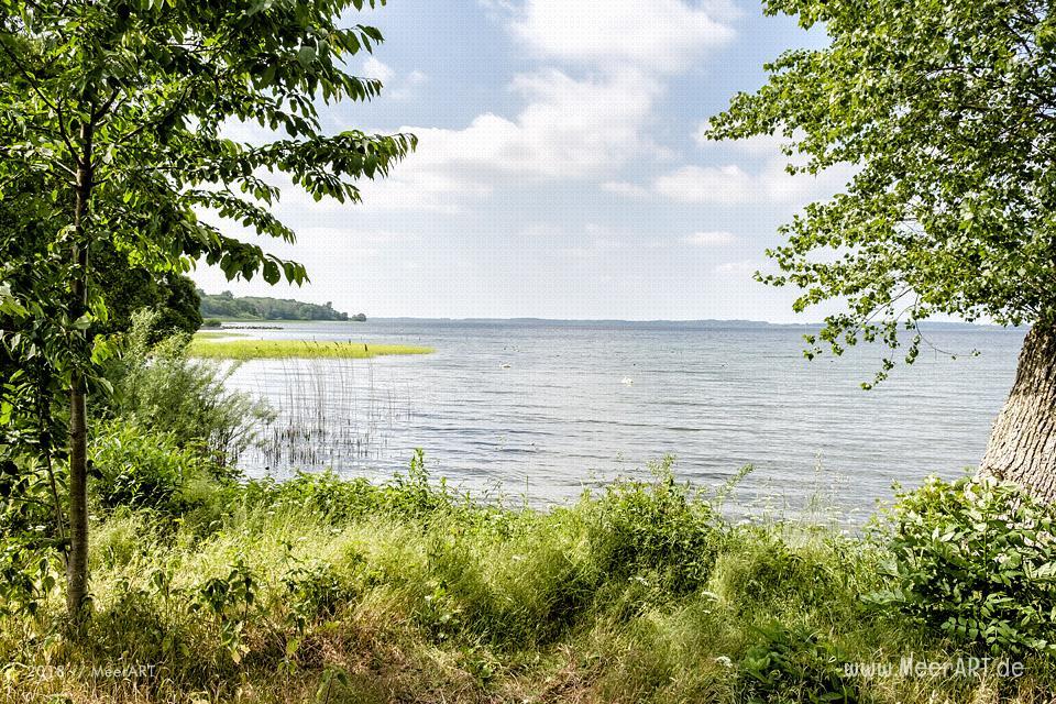 Idylle am Selenter See in Lammershagen und Bellin // Foto: MeerART