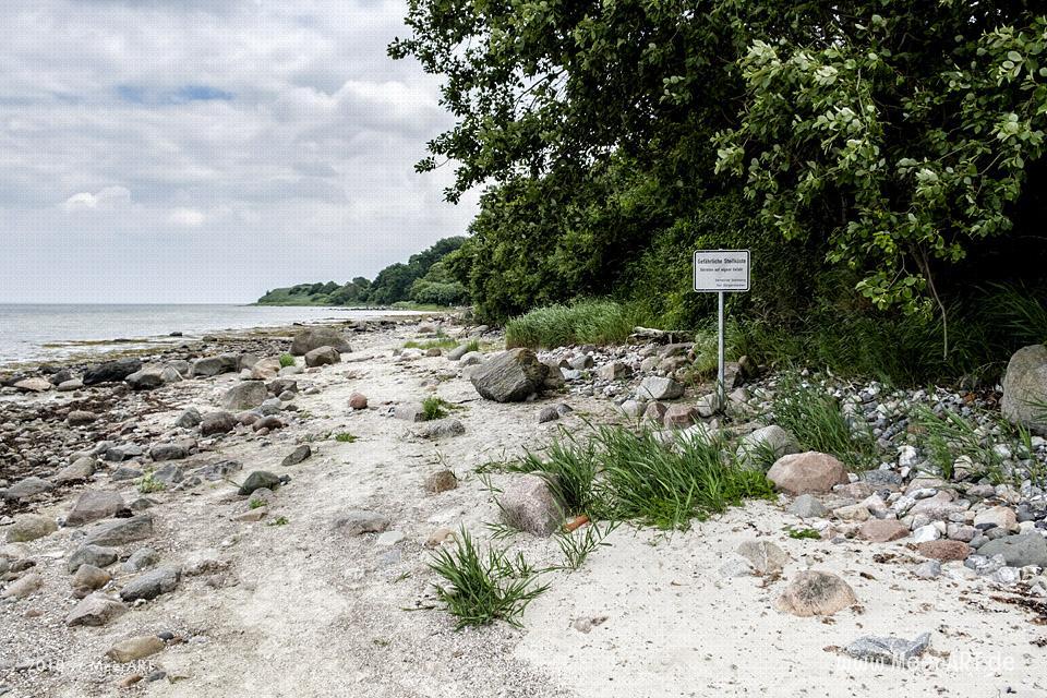 Idyllischer Naturstrand an der Flensburger Förde in Habernis// Foto: MeerART / Ralph Kerpa