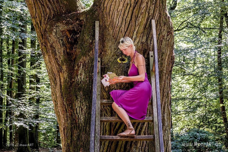 Die Bräutigameiche im Dodauer Forst bei Eutin // Foto: MeerART