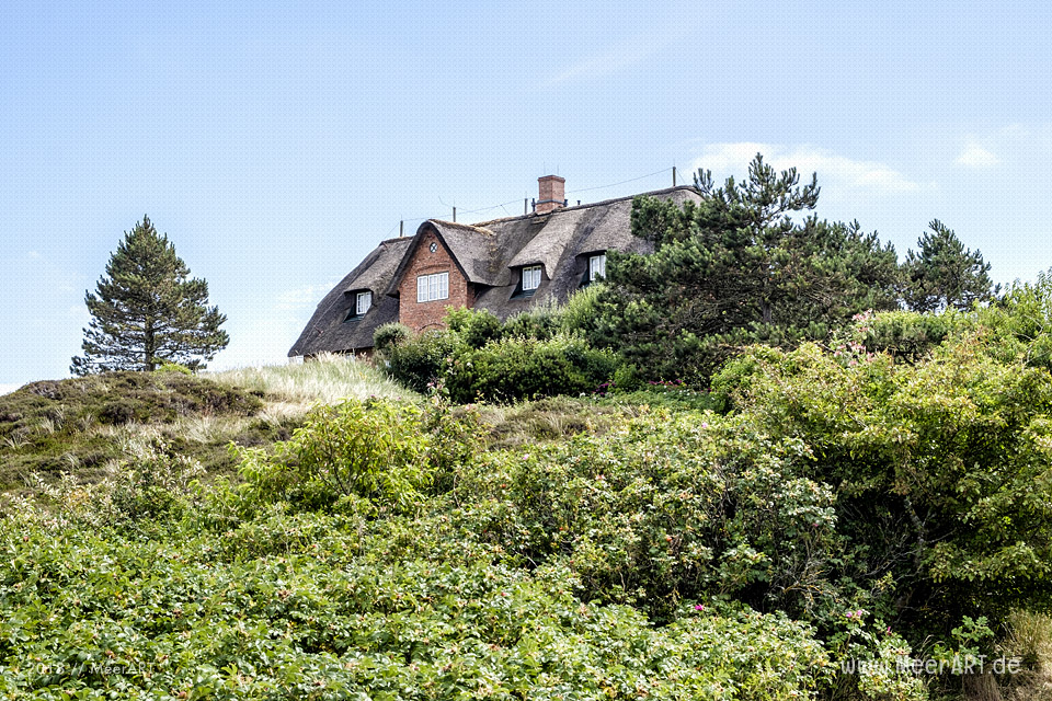 Reetdachhaus in Kampen auf Sylt // Foto: MeerART