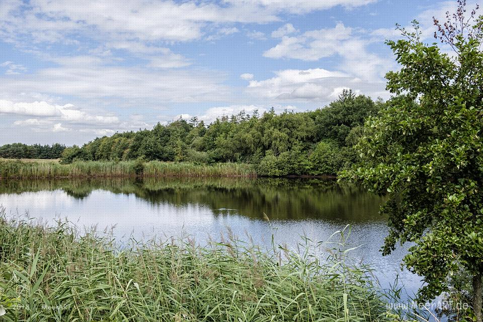 Das idyllische Naturschutzgebiet Langenhorner Heide in Nordfriesland // Foto: MeerART / Ralph Kerpa