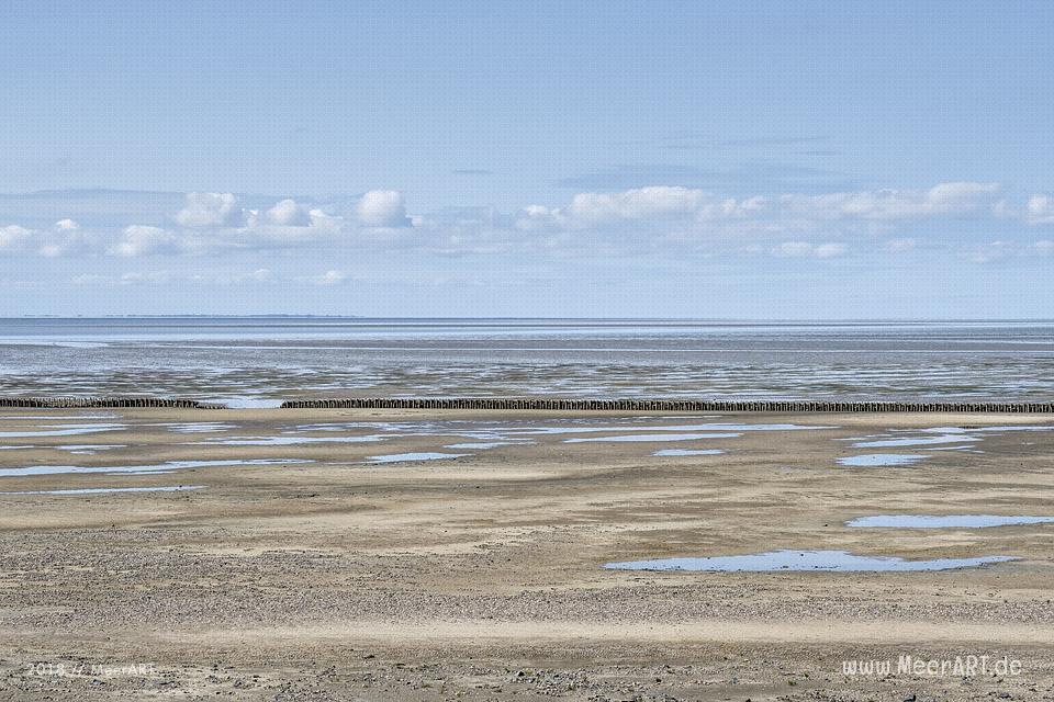 Deichvorland an der Nordsee in Dagebüll // Foto: MeerART