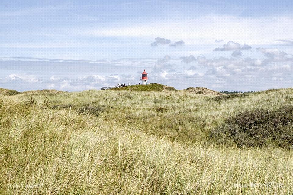 Unser Tag am Kniep auf Amrum // Foto: MeerART / Ralph Kerpa