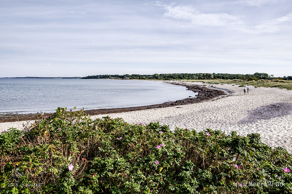 Spätsommerliche Impressionen von der Hohwachter Bucht // Foto: MeerART / Ralph Kerpa
