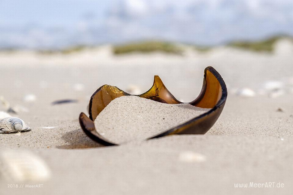 "Reportage zum Thema ""Wie wird Glas richtig recycelt?"" // Foto: MeerART / Ralph Kerpa"