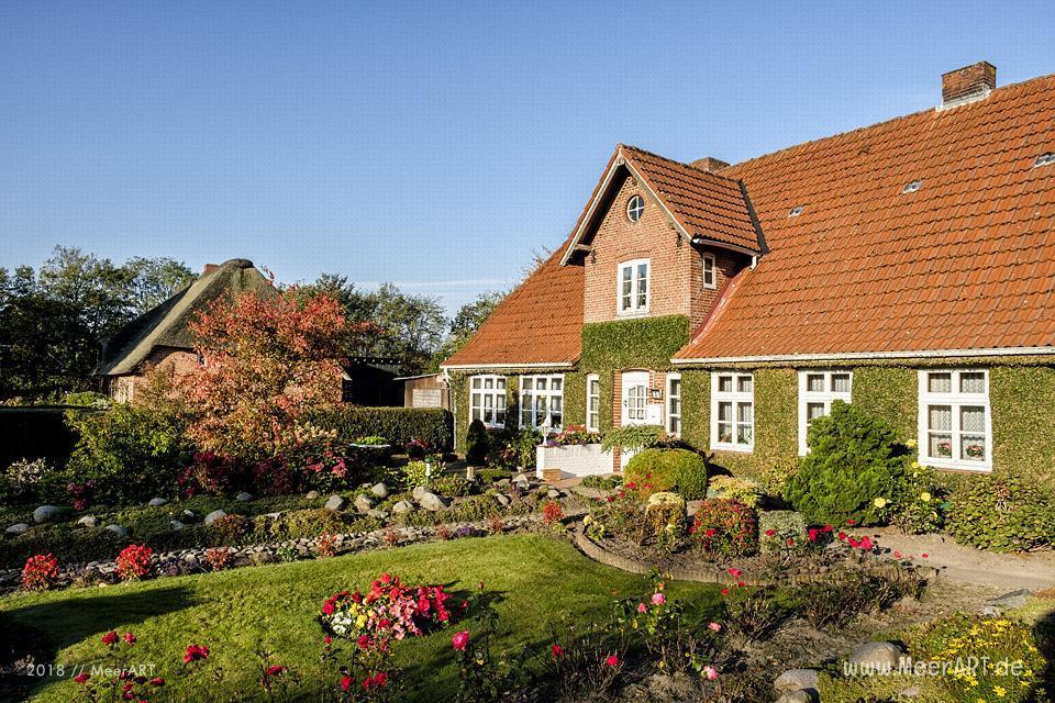 Herbstliche Impressionen aus der Gemeinde Bargum in Nordfriesland // Foto: MeerART / Ralph Kerpa