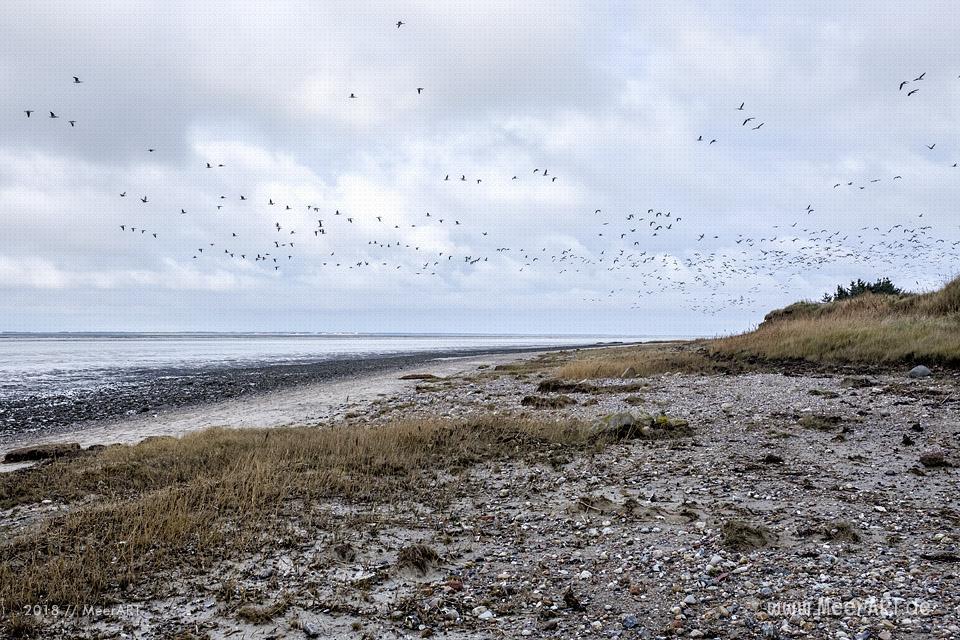 Strandabschnitt an der Nordsee bei Hjerpsted in Sønderjylland // Foto: MeerART / Ralph KerpaStrandabschnitt an der Nordsee bei Hjerpsted in Sønderjylland // Foto: MeerART / Ralph Kerpa