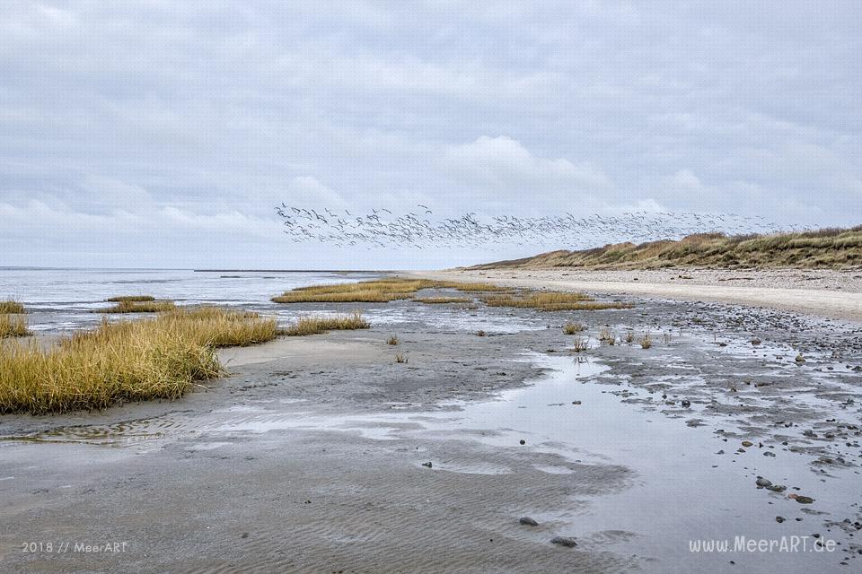 Strandabschnitt an der Nordsee bei Hjerpsted in Sønderjylland // Foto: MeerART / Ralph Kerpa
