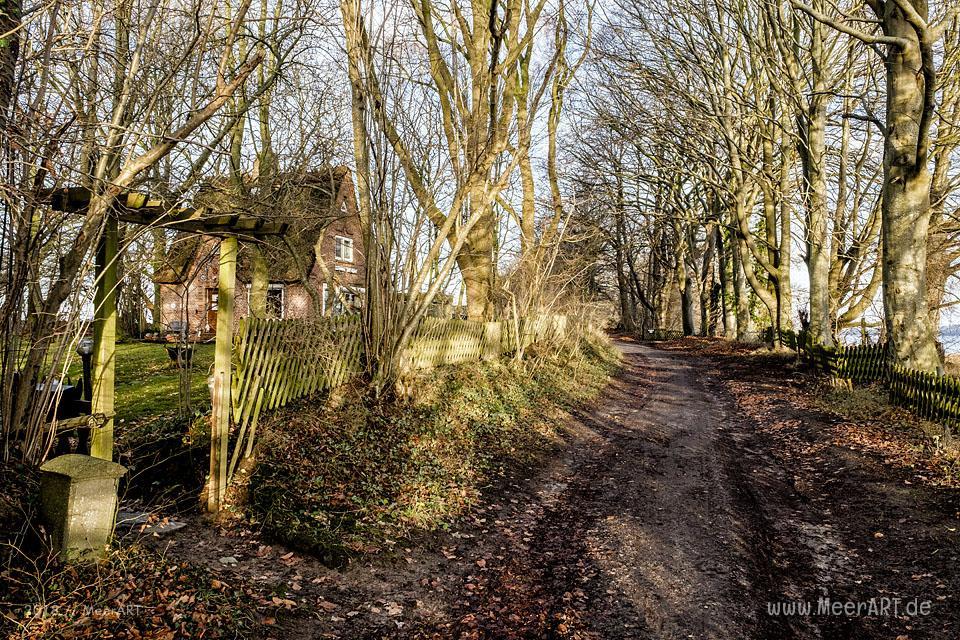 Winterimpressionen aus Ulsnis an der Schlei // Foto: MeerART / Ralph Kerpa