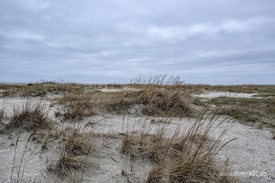 Ein nebliger Wintertag am Strand bei Lakolk auf der dänischen Wattenmeerinsel Rømø // Foto: MeerART / Ralph Kerpa