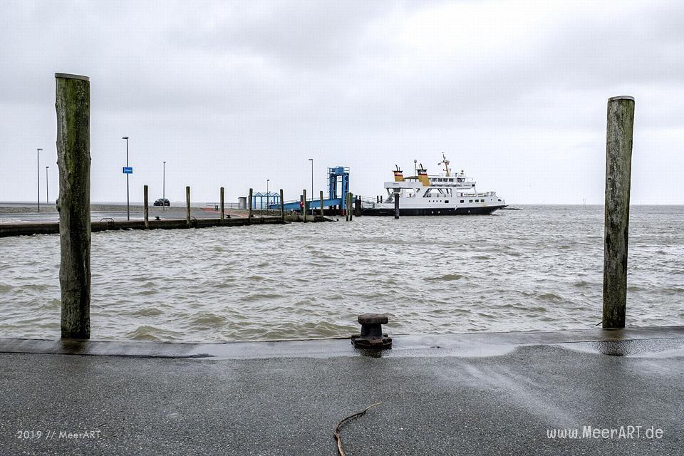 Der Hafen in Schlüttsiel im Kreis Nordfriesland // Foto: MeerART / Ralph Kerpa