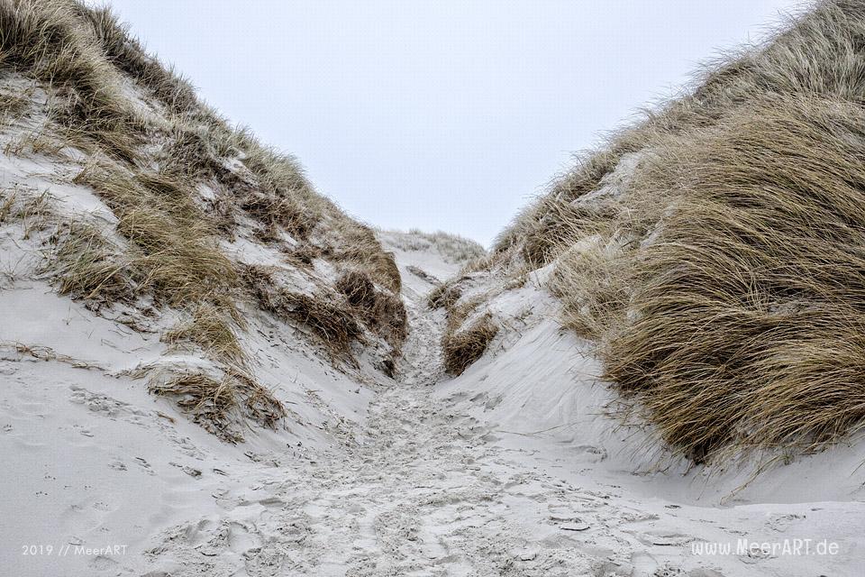 Die traumhafte Dünenlandschaft auf der Nordfriesischen Insel Amrum // Foto: MeerART / Ralph Kerpa