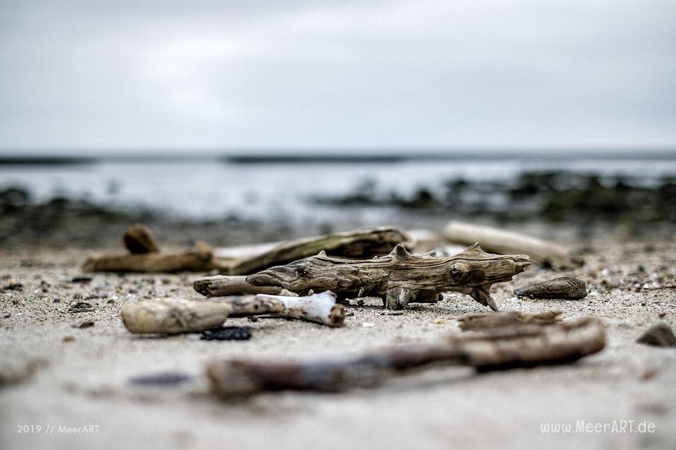 Treibgut am Strand in Schlüttsiel // Foto: MeerART / Ralph Kerpa