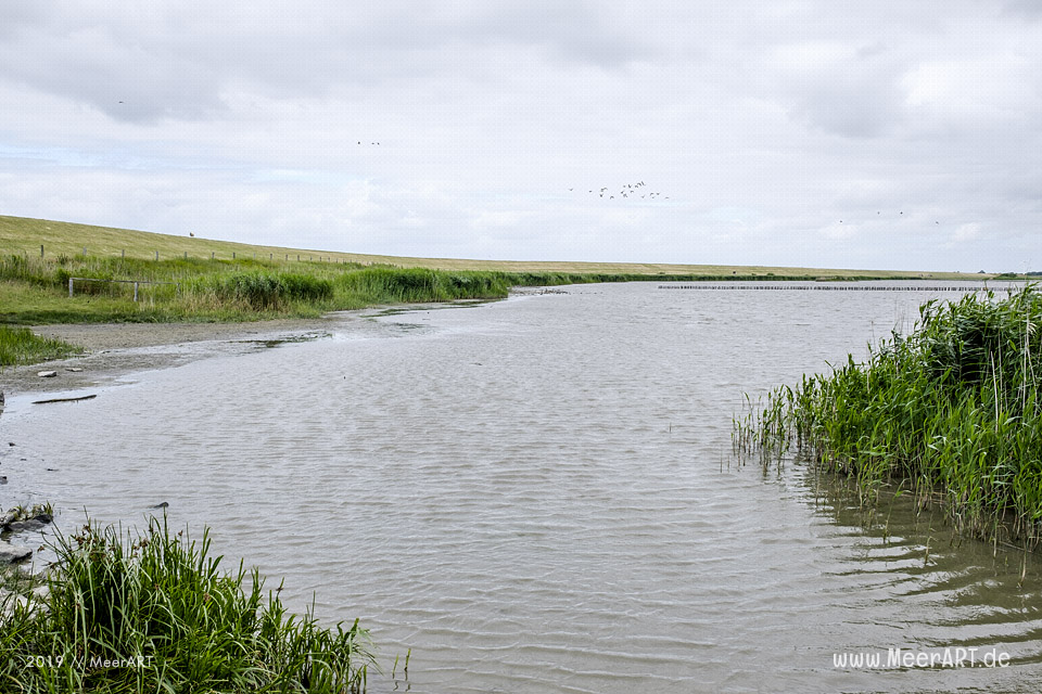 Meerzeit und Durchatmen an der Küste bei Dagebüll // Foto: Ralph Kerpa