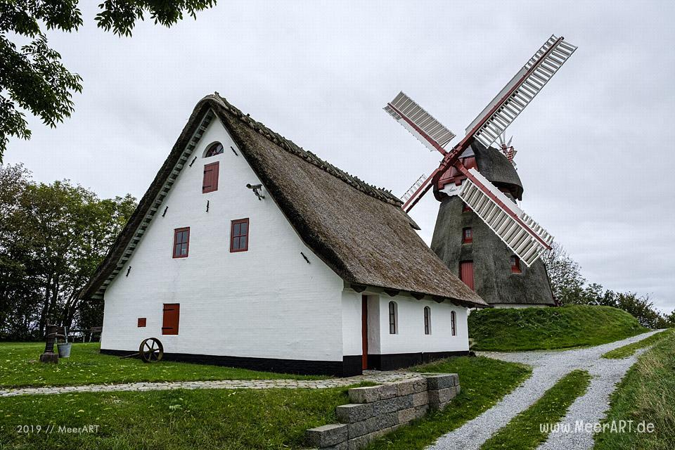 Die Havenbjerg Windmühle bei Nordborg // Foto: MeerART