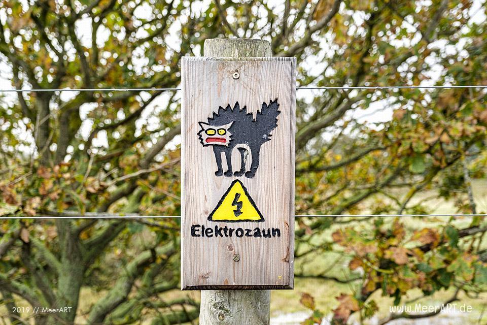 Herbstspaziergang im idyllischen Naturschutzgebiet Geltinger Birk // Foto: MeerART