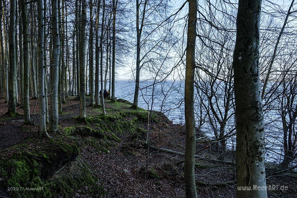 Ein Sonntagsspaziergang an der Ostseeküste in Bockholmwik // Foto: MeerART
