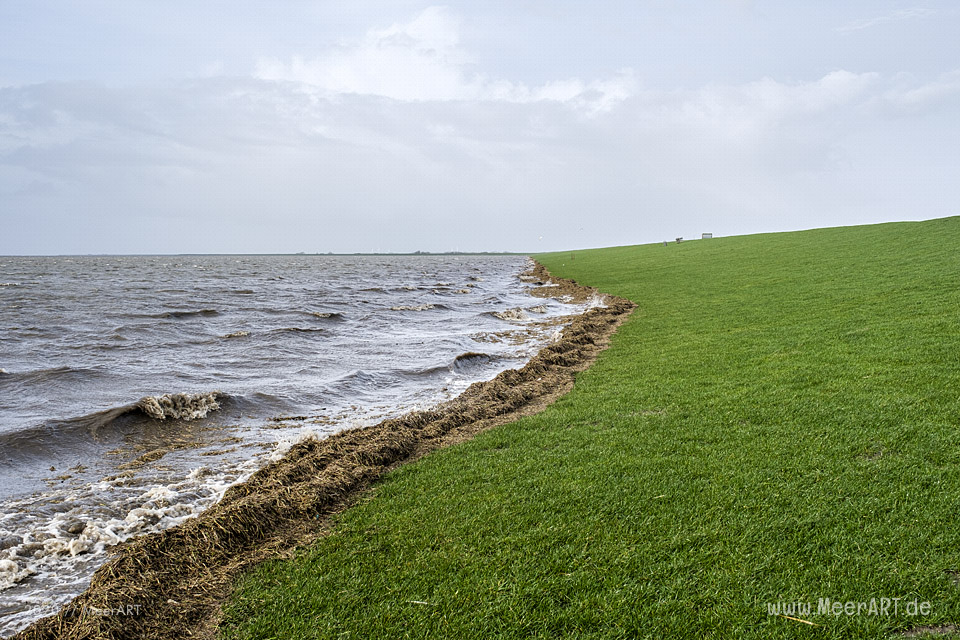Das Sturmtief Sabine trifft auf die Westküste hier an der Küste in den Reußenkögen // Foto: MeerART