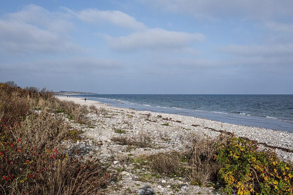 Herbstspaziergang an der Ostsee von Kronsgaard nach Ohe-Maasholm // Foto: MeerART